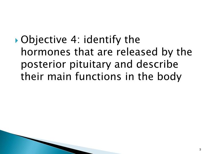 Objective 4: identify the hormones that are released by the posterior pituitary and describe their m...