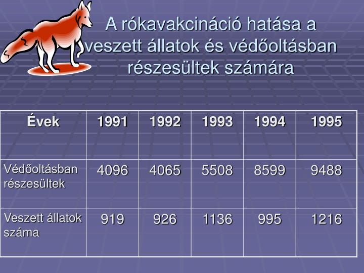 A rókavakcináció hatása a veszett állatok és védőoltásban részesültek számára