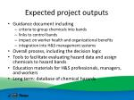 expected project outputs