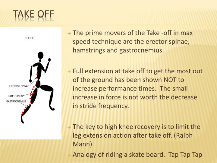 The prime movers of the Take -off in max speed technique are the erector