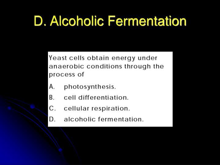 D. Alcoholic Fermentation
