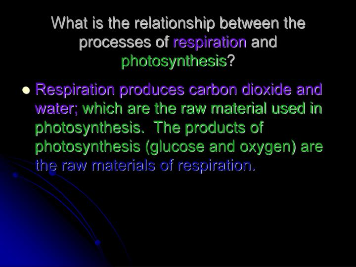 What is the relationship between the processes of