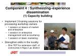 component 4 synthesizing experience dissemination 1 capacity building