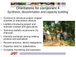 orientations for component 4 synthesis dissemination and capacity building
