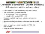 orientations of component 1 market processing 2 expanding production scale and volume
