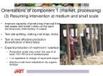 orientations of component 1 market processing 3 resuming intervention at medium and small scale