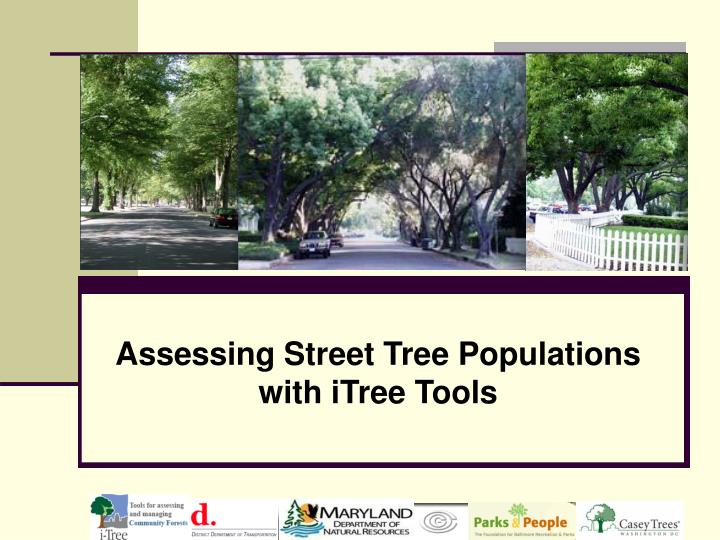 assessing street tree populations with itree tools n.