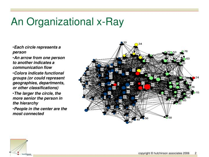 An organizational x ray