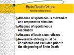 brain death criteria harvard medical school
