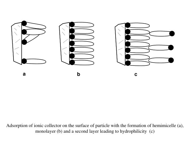 Adsorption of ionic collector on the surface of particle with the formation of hemimicelle (a), monolayer (b) and a second layer leading to hydrophilicity  (c)