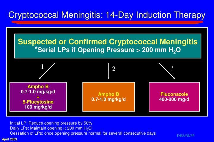 Cryptococcal Meningitis: 14-Day Induction Therapy