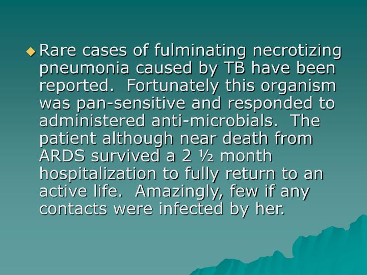 Rare cases of fulminating necrotizing pneumonia caused by TB have been reported.  Fortunately this organism was pan-sensitive and responded to               administered anti-microbials.  The patient although near death from ARDS survived a 2 ½ month hospitalization to fully return to an active life.  Amazingly, few if any contacts were infected by her.