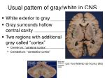 usual pattern of gray white in cns