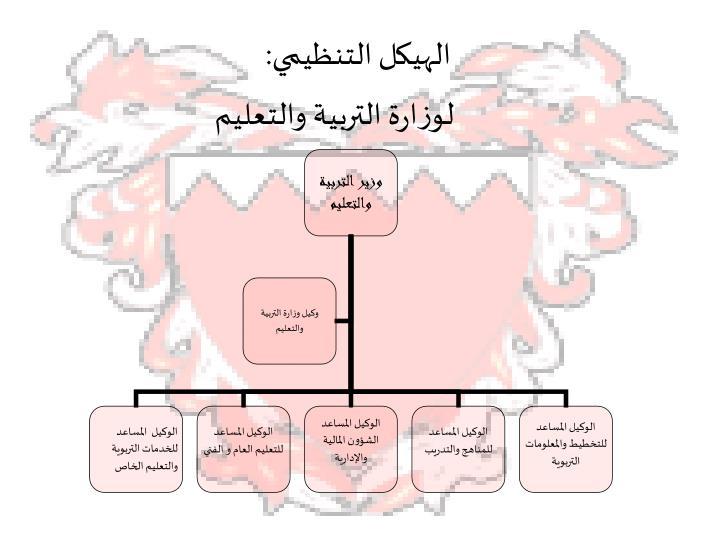 الهيكل التنظيمي: