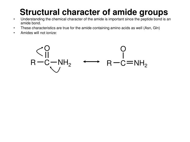 Structural character of amide groups