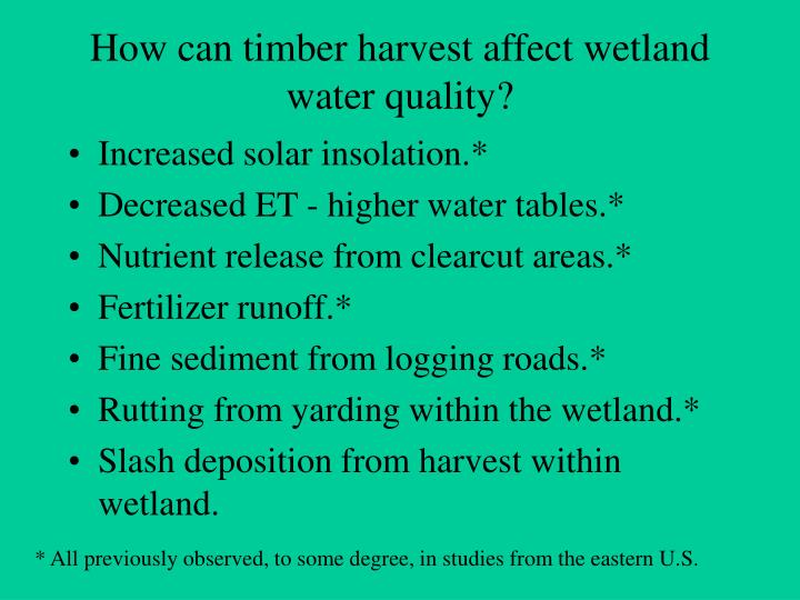How can timber harvest affect wetland water quality