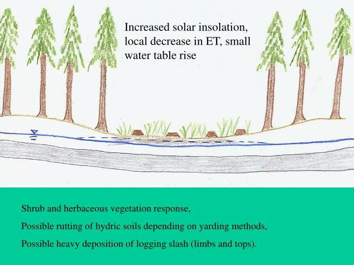 Increased solar insolation, local decrease in ET, small water table rise