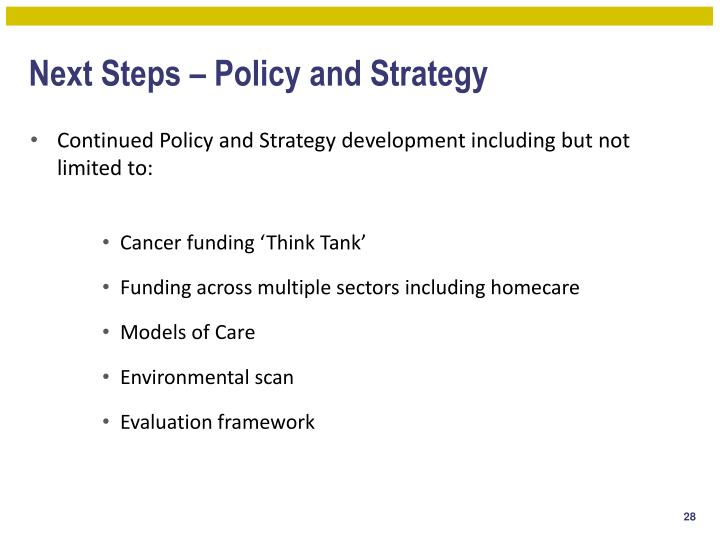 Next Steps – Policy and Strategy