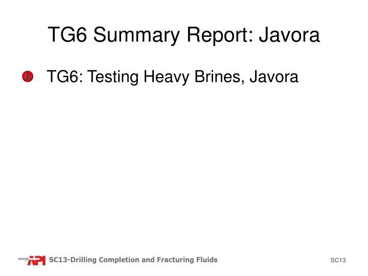 TG6 Summary Report: Javora