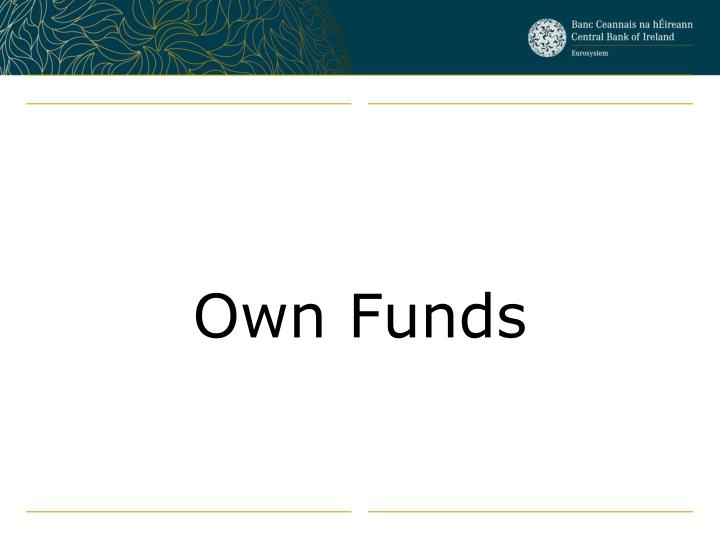 Own Funds