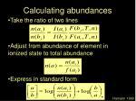 calculating abundances