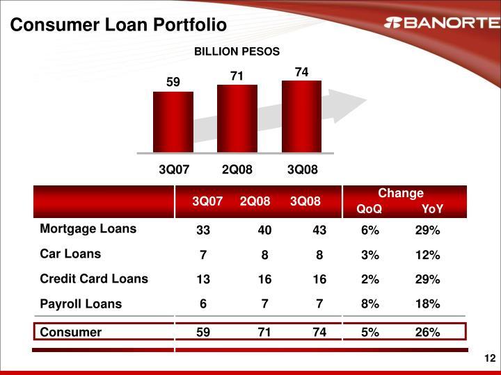 Consumer Loan Portfolio