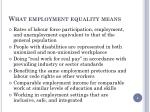 what employment equality means