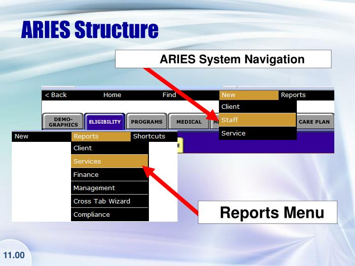 ARIES Structure