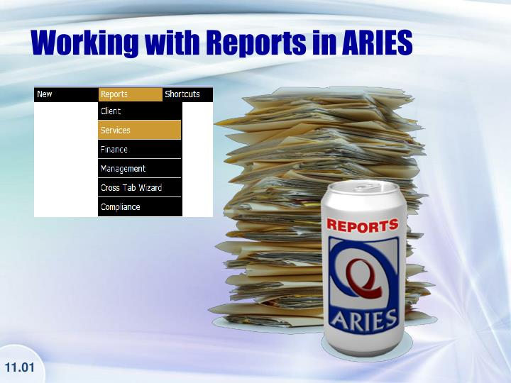 Working with Reports in ARIES