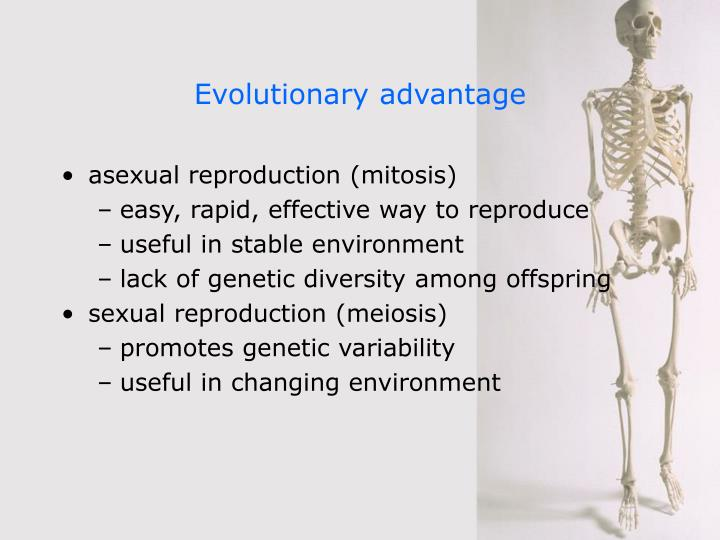 what is the advantage of meiosis
