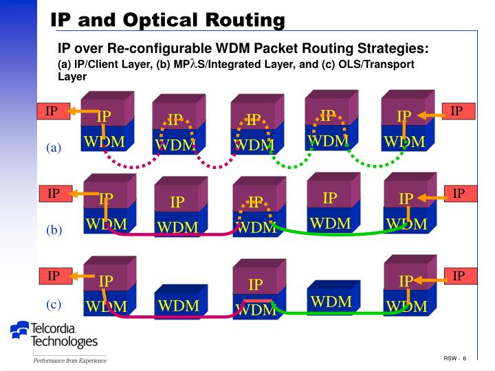IP and Optical Routing