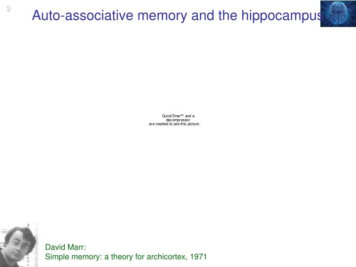Auto associative memory and the hippocampus