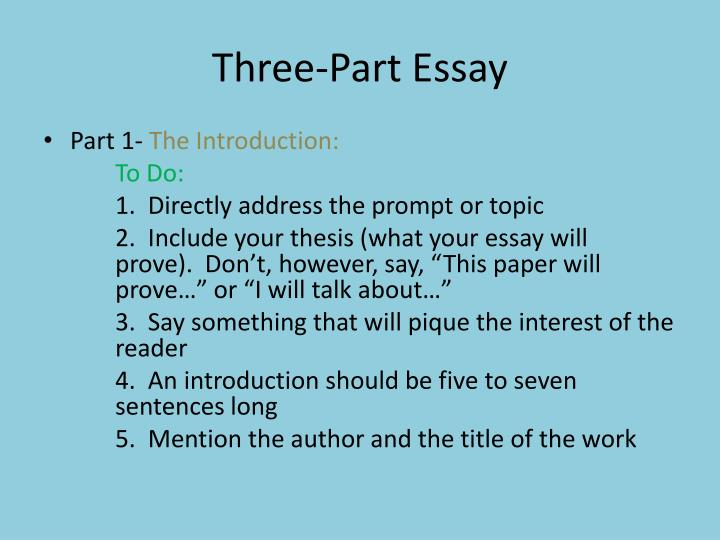 the parts of essay