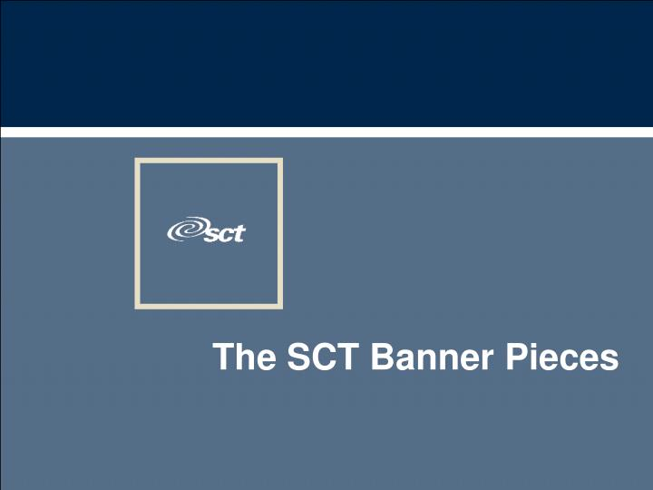 the sct banner pieces n.