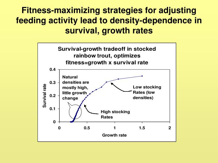 Fitness-maximizing strategies for adjusting feeding activity lead to density-dependence in survival, growth rates