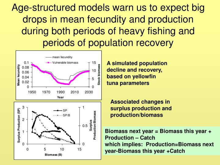 Age-structured models warn us to expect big drops in mean fecundity and production during both periods of heavy fishing and periods of population recovery