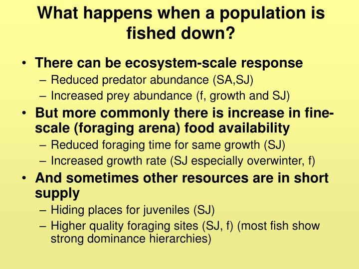 What happens when a population is fished down?