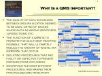 why is a qms important1