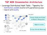 tgp mib dissemination architecture