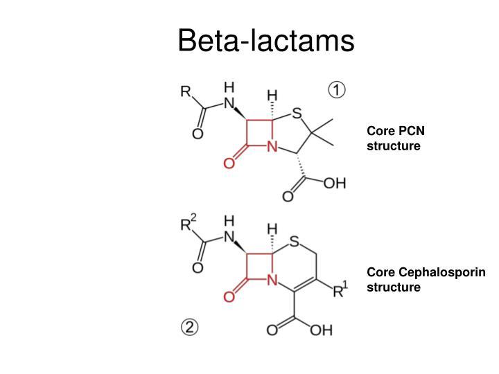 Beta lactams