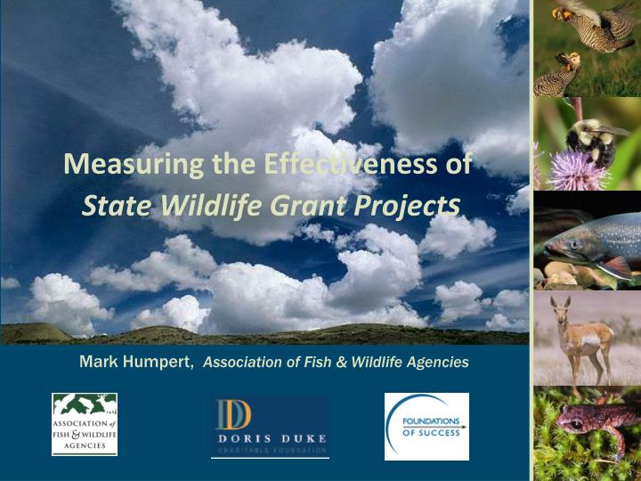 measuring the effectiveness of state wildlife grant project s n.