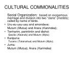 cultural commonalities