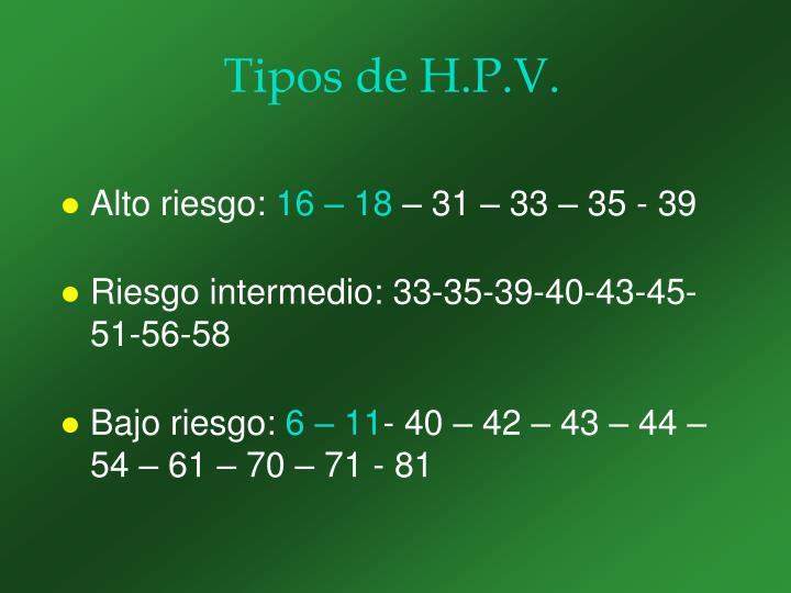 Tipos de H.P.V.