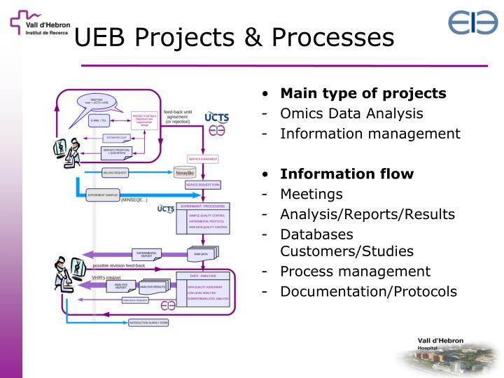 UEB Projects & Processes