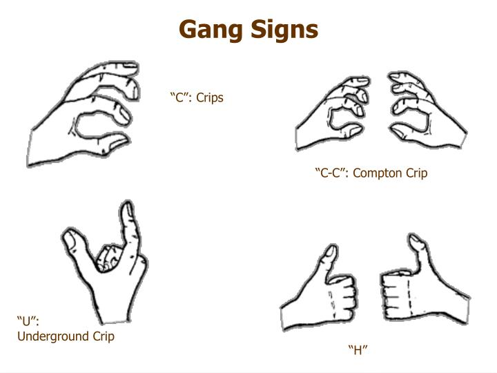 Gang With Three Dots On Hand: STREET LAW- March 20, 2006 PowerPoint Presentation