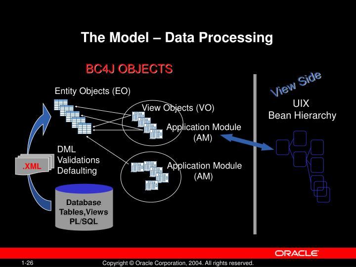 The Model – Data Processing