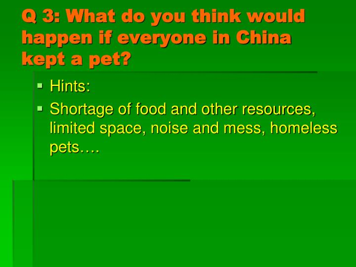 Q 3: What do you think would happen if everyone in China kept a pet?