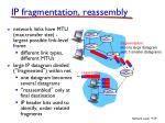 ip fragmentation reassembly
