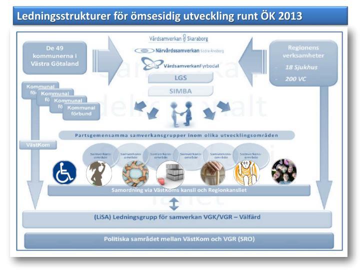 Ledningsstrukturer för ömsesidig utveckling runt ÖK 2013
