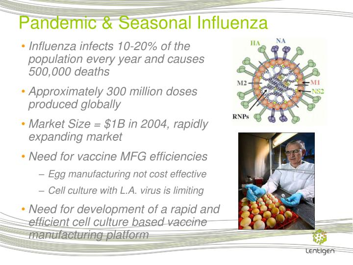 Pandemic & Seasonal Influenza